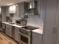 WOLF INDUCTION RANGE WITH BEST HOOD